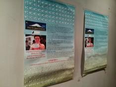 2013 Frijoles Summer Fundraising